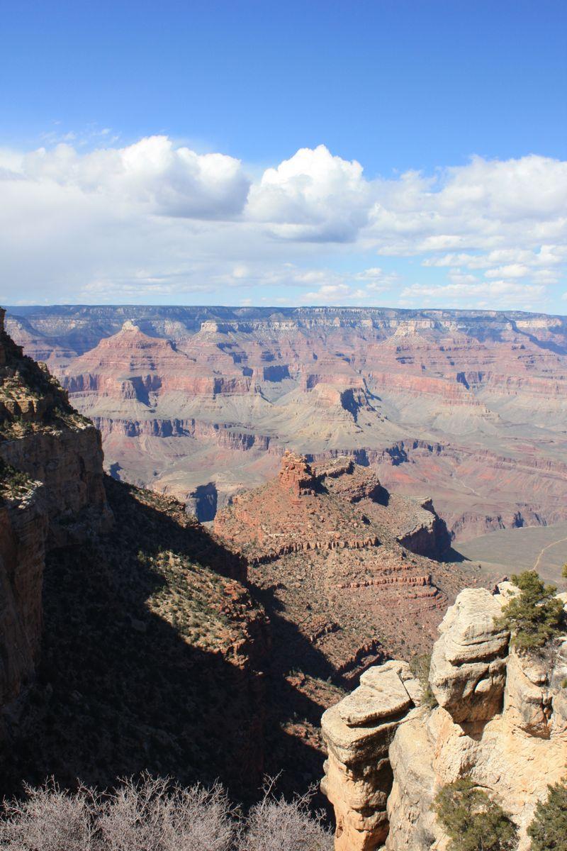 Arizona 09 205